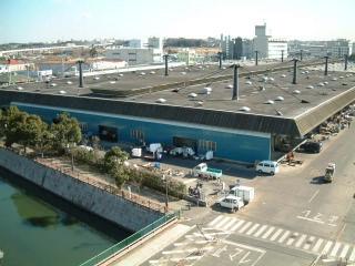 現在の船橋市地方卸売市場