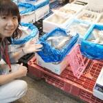 こちらは新鮮な魚を箱売りしています。